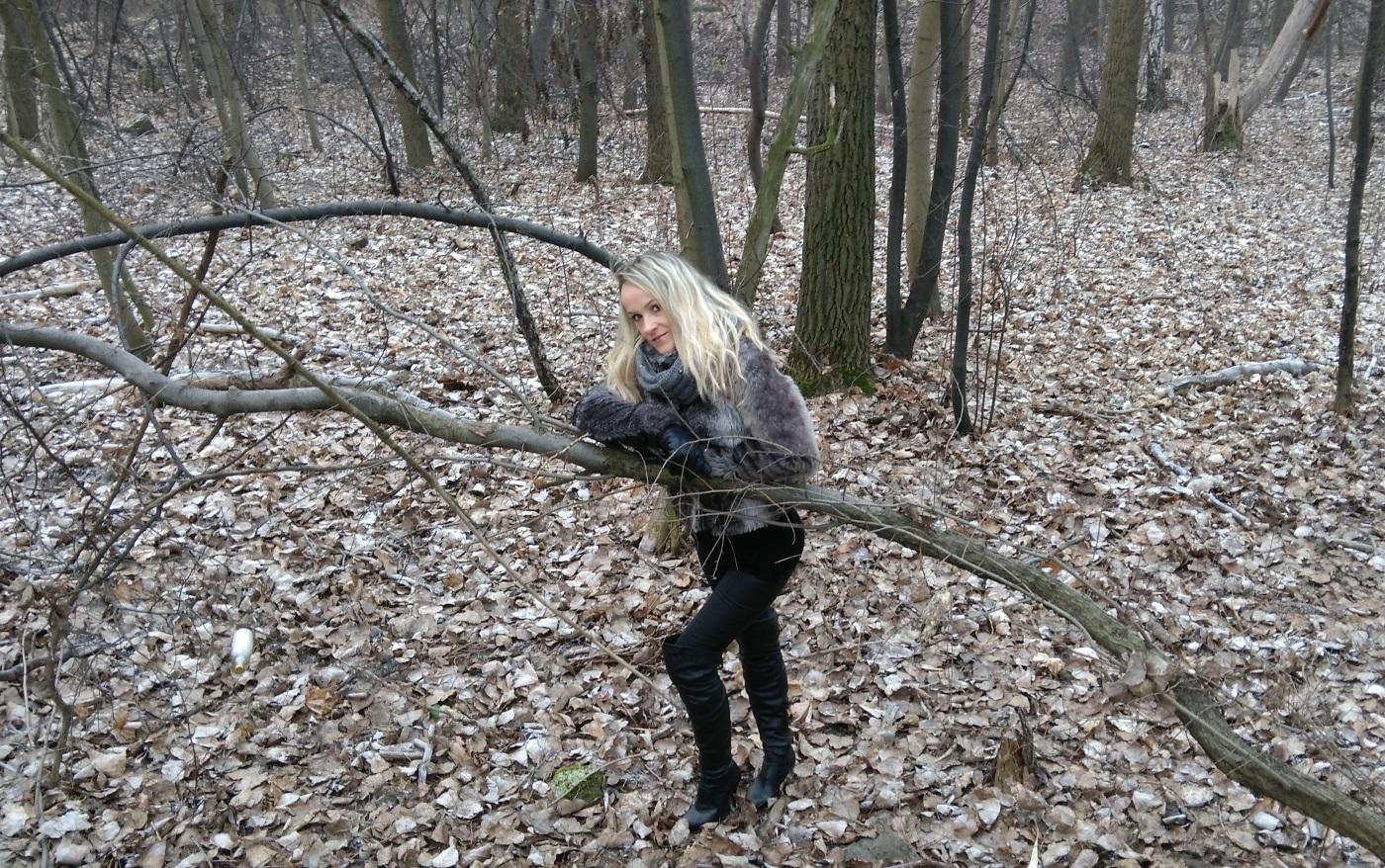 ann-forest